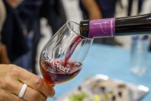 dégustation vin rouge petra viridis